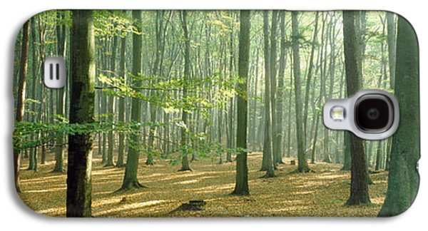 Forest Floor Galaxy S4 Cases - Woodlands Near Annweiler Germany Galaxy S4 Case by Panoramic Images