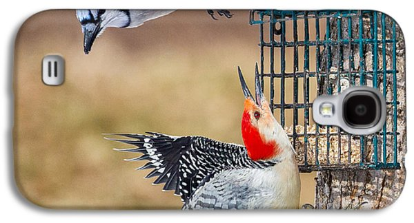 Woodpeckers And Blue Jays Square Galaxy S4 Case by Bill Wakeley