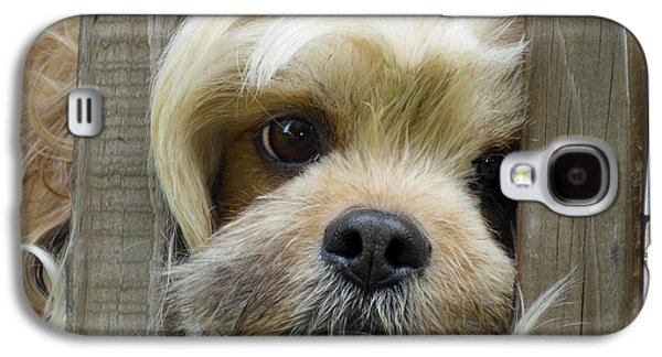 Dogs Digital Galaxy S4 Cases - Words Cant Express Galaxy S4 Case by Robert Orinski