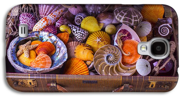 Collect Galaxy S4 Cases - Worn Suitcase Full Of Sea Shells Galaxy S4 Case by Garry Gay