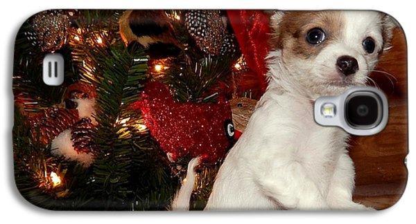 Canine Greeting Cards Digital Galaxy S4 Cases - Xmas Puppy 2 Galaxy S4 Case by Lynn Griffin