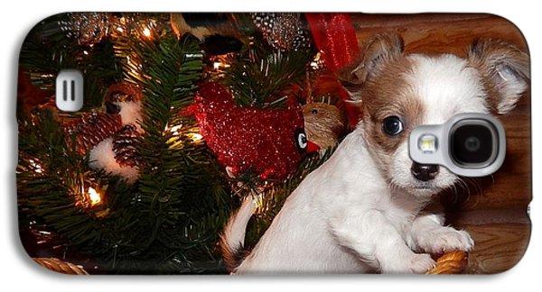 Canine Greeting Cards Digital Galaxy S4 Cases - Xmas Puppy Galaxy S4 Case by Lynn Griffin