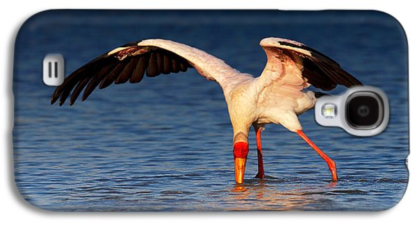 Yellow Photographs Galaxy S4 Cases - Yellow-billed Stork hunting for food Galaxy S4 Case by Johan Swanepoel