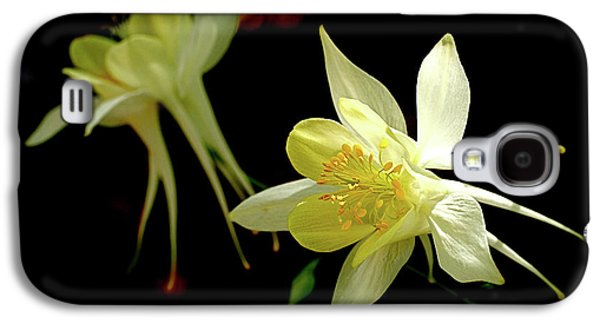 Botanical Galaxy S4 Cases - Yellow Columbine Galaxy S4 Case by Rona Black