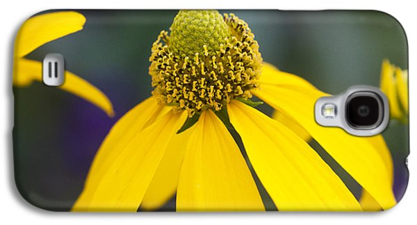 Yellow Coneflower Rudbeckia Galaxy S4 Case by Rich Franco