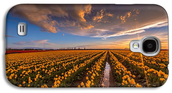 Yellow Fields And Sunset Skies Galaxy S4 Case by Mike Reid