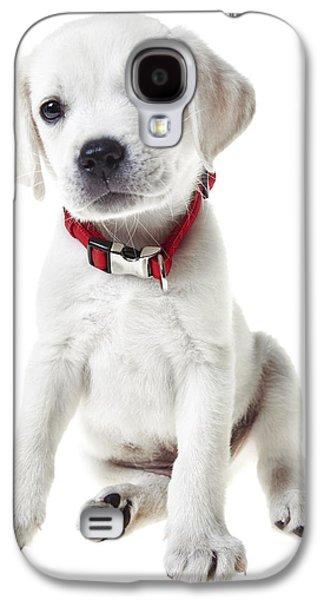 Puppies Galaxy S4 Cases - Yellow Lab Puppy Galaxy S4 Case by Diane Diederich