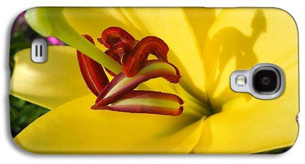 Abstracted Galaxy S4 Cases - Yellow Lily Shadows I I I Galaxy S4 Case by Rowena Throckmorton