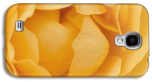 Floribunda Galaxy S4 Cases - Yellow Rose Galaxy S4 Case by Cindi Ressler