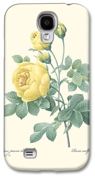 Digital Paintings Galaxy S4 Cases - Yellow Rose Galaxy S4 Case by Gary Grayson