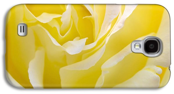 Roses Galaxy S4 Cases - Yellow Rose Galaxy S4 Case by Svetlana Sewell