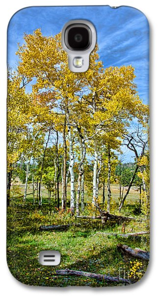 Fort Collins Galaxy S4 Cases - Yellow Tree Galaxy S4 Case by Keith Ducker