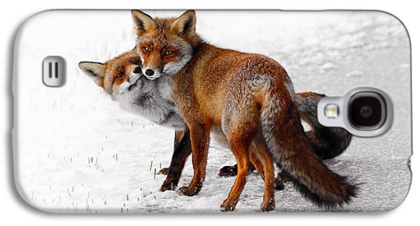 Playing Photographs Galaxy S4 Cases - Yin Yang _ Red Fox Love Galaxy S4 Case by Roeselien Raimond