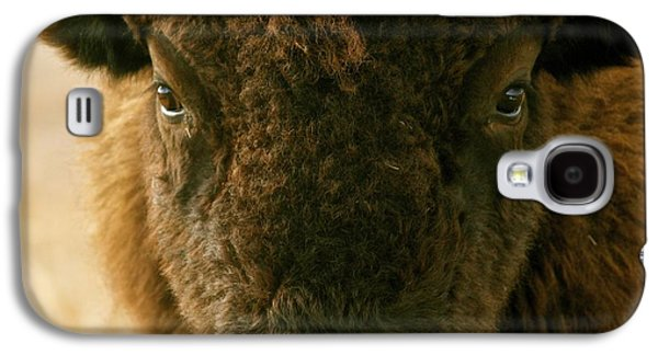 Bison Pyrography Galaxy S4 Cases - YOU SHALL NOT PASS sepia Galaxy S4 Case by Peggy Detmers