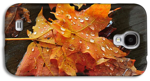 Catherine Reusch Daley Galaxy S4 Cases - You waited for me to fall Galaxy S4 Case by Catherine Reusch  Daley
