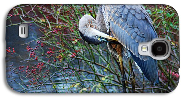 Young Birds Galaxy S4 Cases - Young Blue Heron Preening Galaxy S4 Case by Paul Ward