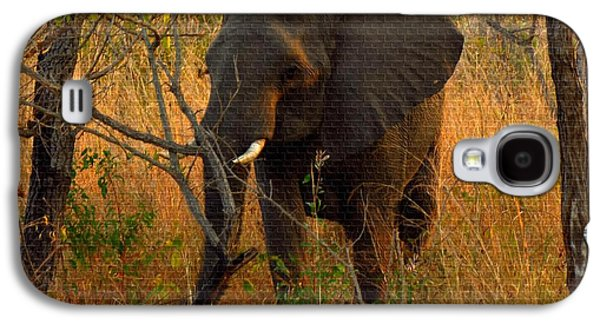 Abstract Digital Paintings Galaxy S4 Cases - Young Elephant  H b Galaxy S4 Case by Gert J Rheeders