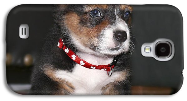 Puppy Digital Art Galaxy S4 Cases - Young Otis Ray Galaxy S4 Case by Mike McGlothlen