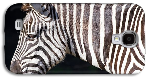 Harem Photographs Galaxy S4 Cases - Zebra 7D8908 Galaxy S4 Case by Wingsdomain Art and Photography