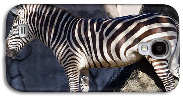 Harem Photographs Galaxy S4 Cases - Zebra 7D8945 Galaxy S4 Case by Wingsdomain Art and Photography