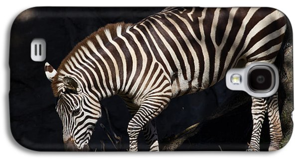 Harem Photographs Galaxy S4 Cases - Zebra 7D8949 Galaxy S4 Case by Wingsdomain Art and Photography