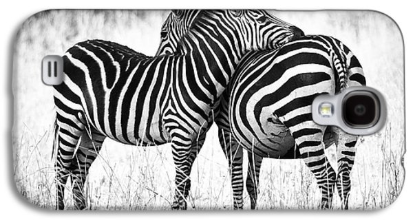 Black And White Galaxy S4 Cases - Zebra Love Galaxy S4 Case by Adam Romanowicz