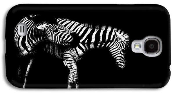 Light And Dark Galaxy S4 Cases - Zebra Stripes Galaxy S4 Case by Martin Newman