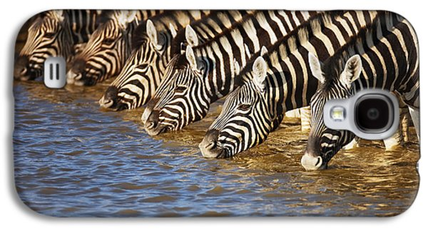 Drink Photographs Galaxy S4 Cases - Zebras drinking Galaxy S4 Case by Johan Swanepoel