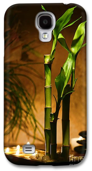 Bamboo Galaxy S4 Cases - Zen Time Galaxy S4 Case by Olivier Le Queinec