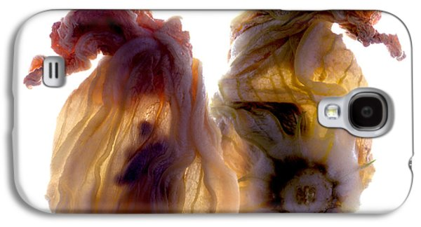 Zucchini Blossom Duo Galaxy S4 Case by Julia McLemore