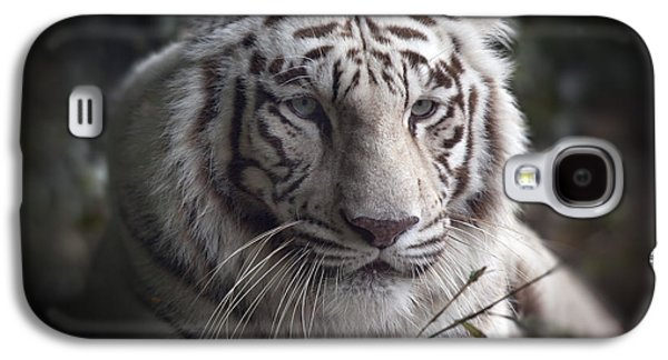 The Tiger Galaxy S4 Cases -  The Tigers  Watchful Eye Galaxy S4 Case by Heinz G Mielke