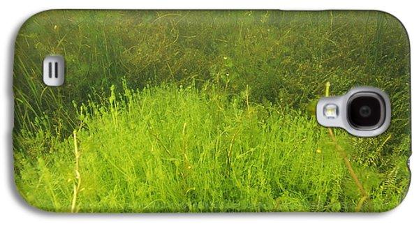 Alga Galaxy S4 Cases - Algae Galaxy S4 Case by Alexis Rosenfeld
