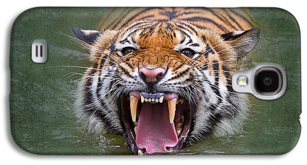Growling Galaxy S4 Cases - Angry Tiger Galaxy S4 Case by Louise Heusinkveld