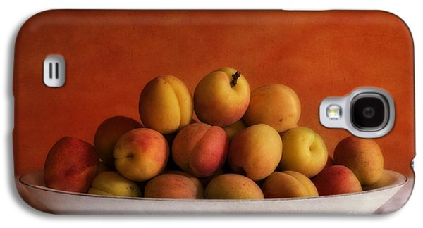 Healthy Galaxy S4 Cases - Apricot Delight Galaxy S4 Case by Priska Wettstein