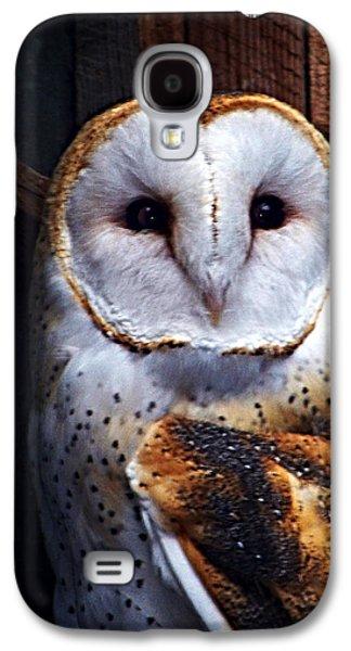 Digital Galaxy S4 Cases - Barn Owl  Galaxy S4 Case by Anthony Jones