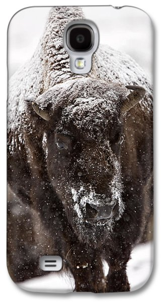 Bison Digital Galaxy S4 Cases - Bison Buffalo Wyoming Yellowstone Galaxy S4 Case by Mark Duffy