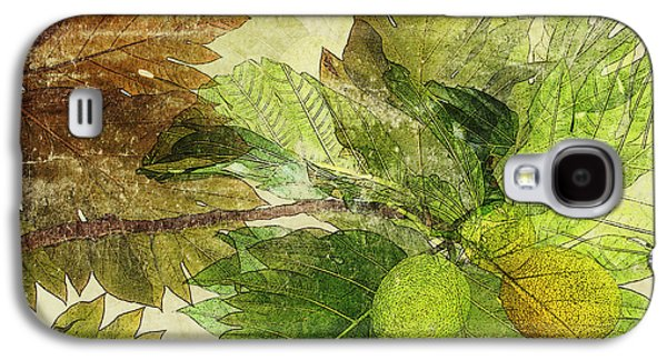 Fruit Tree Art Galaxy S4 Cases - Breadfruit Galaxy S4 Case by Kaypee Soh - Printscapes