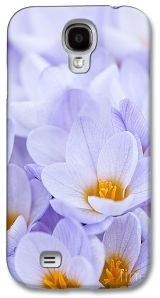 Early Spring Galaxy S4 Cases - Crocus flowers Galaxy S4 Case by Elena Elisseeva
