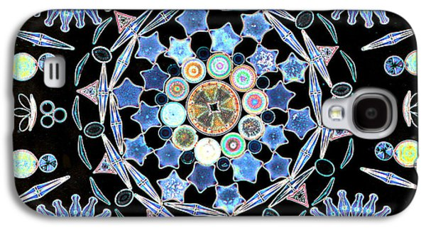 Diatoms Photographs Galaxy S4 Cases - Diatoms Galaxy S4 Case by M I Walker