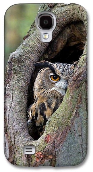 Fauna Photographs Galaxy S4 Cases - Eurasian Eagle-owl Bubo Bubo Looking Galaxy S4 Case by Rob Reijnen