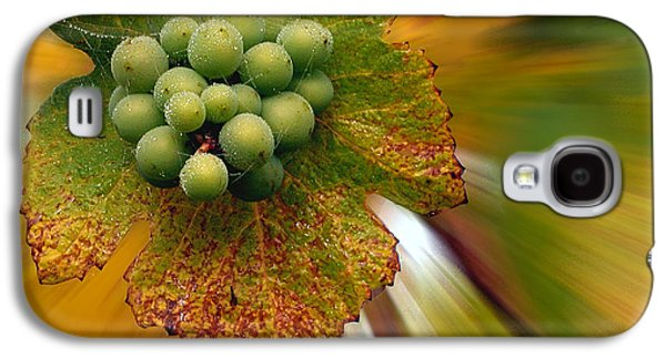 Creative Manipulation Galaxy S4 Cases - Grapes Galaxy S4 Case by Jean Noren