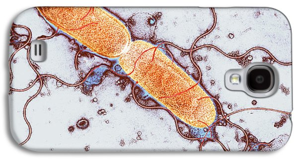 Microbiological Galaxy S4 Cases - Gut Bacterium Reproducing, Tem Galaxy S4 Case by Hazel Appleton, Centre For Infectionshealth Protection Agency