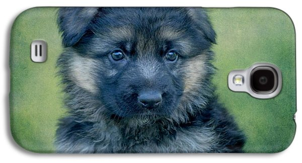 Puppy Digital Art Galaxy S4 Cases - Long Coated Puppy Galaxy S4 Case by Sandy Keeton