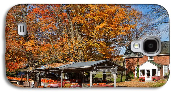 Shed Galaxy S4 Cases - Pumpkins For Sale Galaxy S4 Case by Louise Heusinkveld