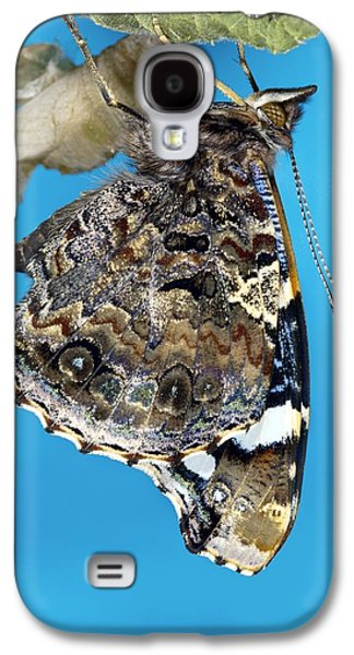 Cocoon Galaxy S4 Cases - Red Admiral Butterfly Galaxy S4 Case by Dr Keith Wheeler