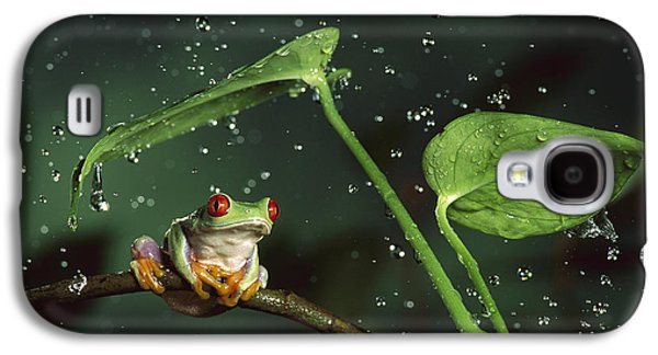 Frogs Photographs Galaxy S4 Cases - Red Eyed Tree Frog in the Rain Galaxy S4 Case by Michael Durham