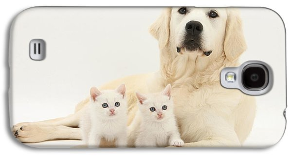House Pet Galaxy S4 Cases - Retriever With Friendly Kittens Galaxy S4 Case by Mark Taylor