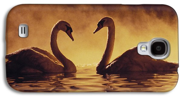 Swan Pair Galaxy S4 Cases - Romantic African Swans Galaxy S4 Case by Brent Black - Printscapes