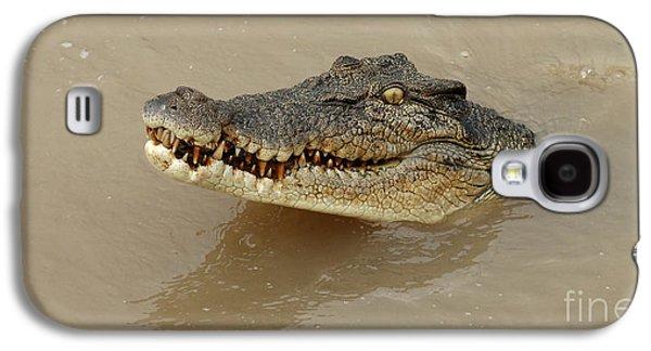Salt Water Crocodile 3 Galaxy S4 Case by Bob Christopher