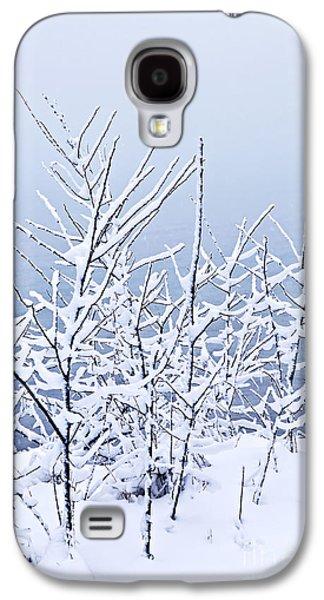 January Galaxy S4 Cases - Snowy trees Galaxy S4 Case by Elena Elisseeva